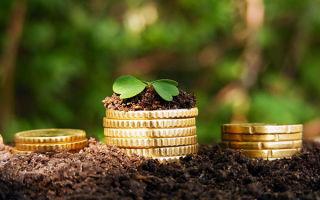Особенности земельного налога