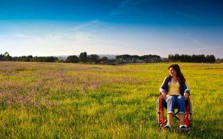 Особенности процедуры предоставления земельных участков инвалидам