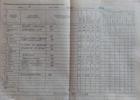 Образец технического паспорта 5 стр.