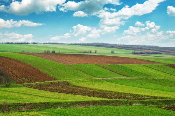 Продление договора аренды земельного участка для строительства