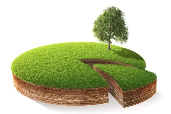 Обременение земельного участка в 2019 году: как проверить, порядок снятия